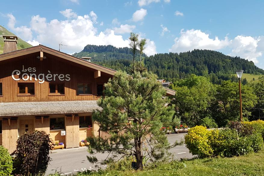 les-congeres-location-appartement-chalet-luxe-ski-alpes.jpg